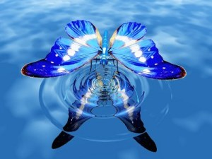 beautiful-butterfly-on-
