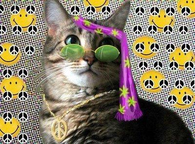 HippieCat